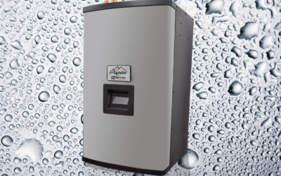 Should You Purchase a Traditional or High Efficiency Boiler?